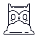 Owl in Clouds Icon