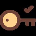 Key Check Icon