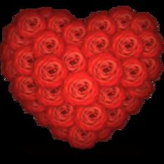 roses_heart