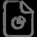 Pie Chart Document Icon
