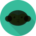 Monkey Animal Portrait Flat Icon