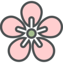 Flat Blossom