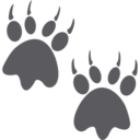 Bear Paw Prints Glyph Icon