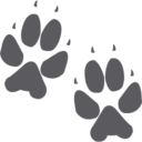 Dog Paw Prints Glyph Icon