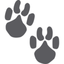 Cat Paw Prints Glyph Icon