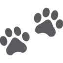 Puppy Paw Prints Glyph Icon