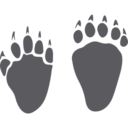 Wild Animal Tracks Glyph Icon
