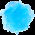Wordpress Colorful Icon