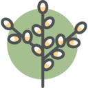 Flat Branch Icon