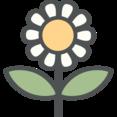 Flat Daisy Icon