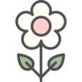 Flat White Flower Icon