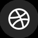 Circle Dribbble Icon