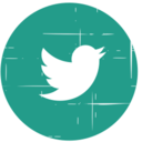 Twitter Bird Blue Distressed Icon