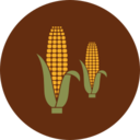 Colorful Autumn Corn Icon