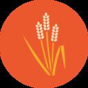 Colorful Autumn Grain Icon