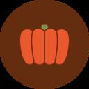 Colorful Autumn Pumpkin Icon