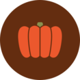 Colorful Autumn Pumpkin Icon