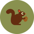 Colorful Autumn Squirrel Icon
