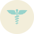 Caduceus Flat Vintage Icon