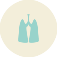 Lung Health Flat Vintage Icon
