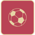Flat Soccer Icon