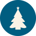 Traditional Christmas Tree Icon