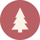 Pine Christmas Tree Icon