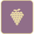 Flat Grape Icon