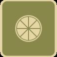Flat Lemon Slice Icon