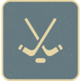 Flat Hockey Icon