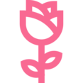 Outline Flower Icon