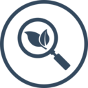 Organic Search SEO Icon