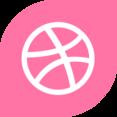 Dribbble Social Media Icon