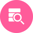 Database Search Magnifier Icon