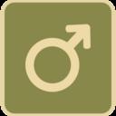 Flat Male Symbol Icon