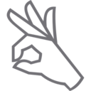 Outline OK Icon