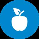 Flat Apple Icon