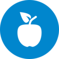 Flat Apple Icon