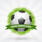 Small 1x soccer champion league design