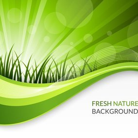 Fresh Nature Background
