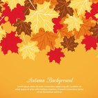 Small 1x dd autumn background 64453 preview
