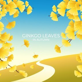 Ginkgo Leaves Autumn Landscape