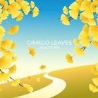 Small 1x ginkgo leaves autumn landscape