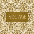 Beautiful Vintage Damask Background