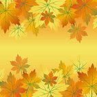 Small 1x dd autumn background 65453 preview