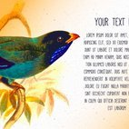 Small 1x dd vintage bird text template 43234 preview