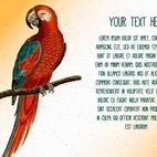 Small 1x dd vintage bird text template 33412 preview