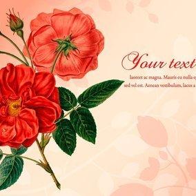 Beautiful Vintage Roses Illustration