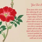 Red Rose Floral Template