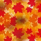 Small 1x dd autumn background 66723 preview